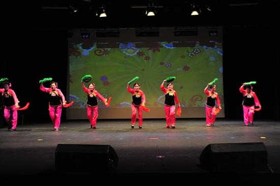 欢聚一堂 基督城中华协会成功举办2015新春联欢会